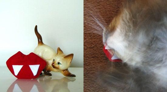 Twihard Cats Need Vampire Fangs