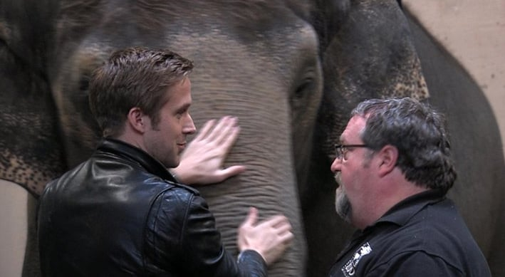 Seriously Adorable —Ryan Gosling Makes Some Animal Friends at The Cincinnati Zoo!