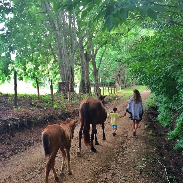 """Gisele spent a day """"having fun with my little guy."""" Look at little Benjamin guiding the horses! Source: Instagram user giseleofficial"""
