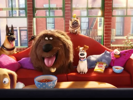 WATCH: Take an Exclusive Look Inside The Secret Life of Pets