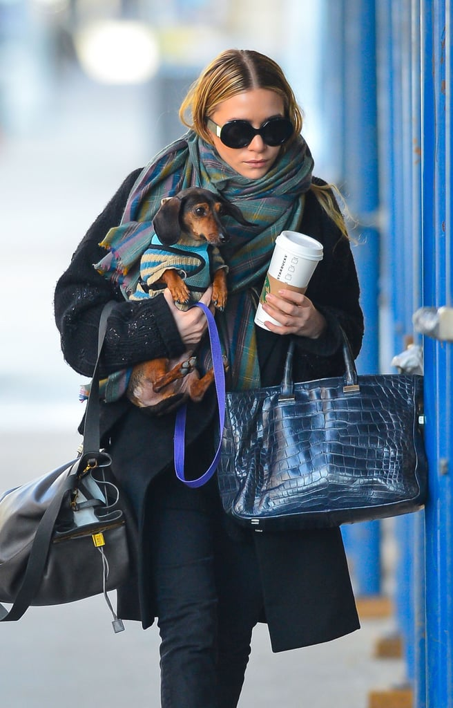 Ashley Olsen gave her dog a lift in NYC.