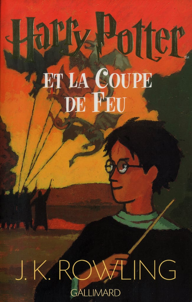 Harry Potter and the Goblet of Fire, France