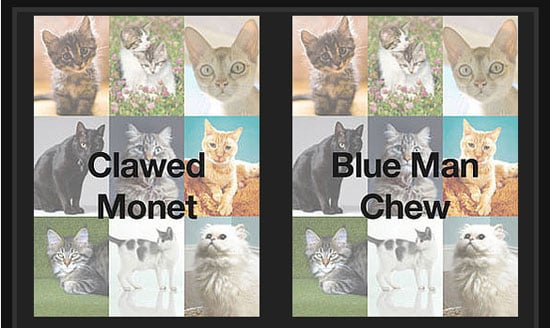 "Play ""Which Cat Name Is Wackiest?"" . . . And Win!"