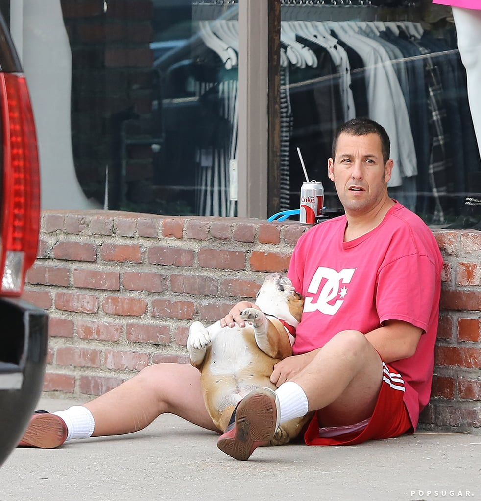 Adam Sandler gave his dog a belly rub while sitting on the sidewalk in LA on Sunday.