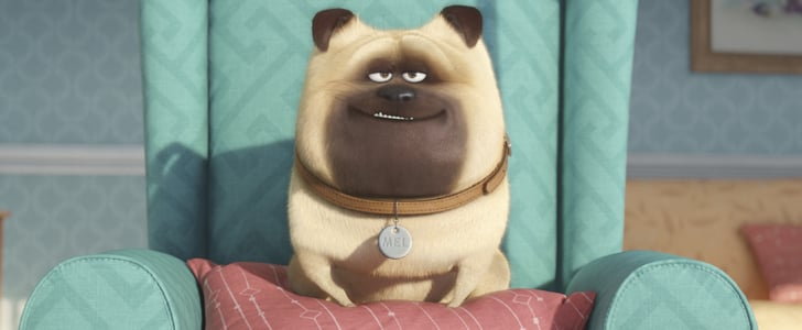If You Love Minions, You Need to Watch the Trailer For The Secret Life of Pets