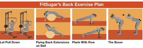 Free Exercise Plan for Strengthing and Toning the Back