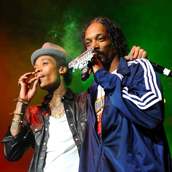 Railing Collapse at Snoop Dogg Wiz Khalifa Concert Video