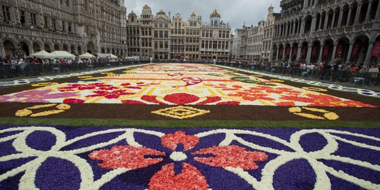 This 19,000 Square-Foot Flower Carpet Is The Ultimate Gesture Of Friendship