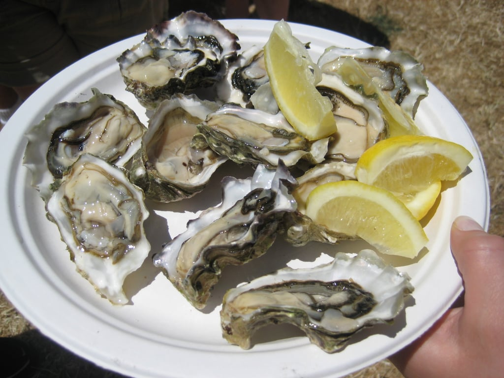 However, I did get a plate full of fresh shucked oysters. These babies were cold, briny, and absolutely delicious. How about you, do you enjoy oysters? Have you ever shucked one?