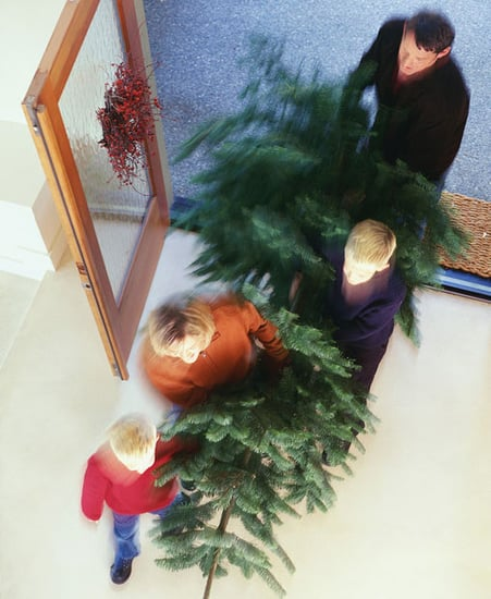 Ten Tips 'Til The Holiday: Choosing a Tree