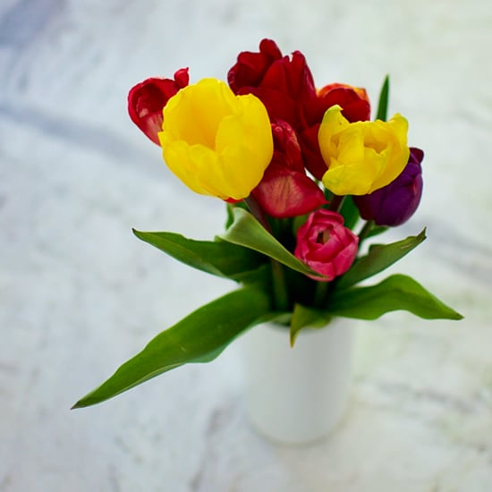 How to Keep Tulips From Drooping
