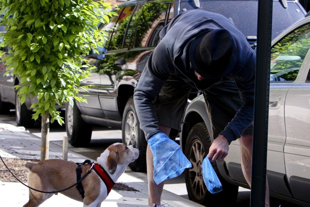 New Puppy Alert! Hugh Jackman and JJ