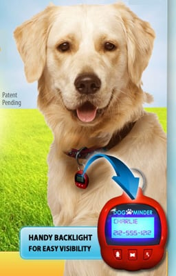 Dog-e-Minder: Spoiled Sweet or Spoiled Rotten?