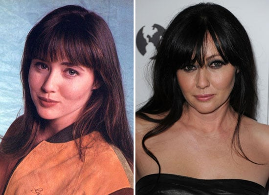 Beverly Hills 90210 Cast Current and Upcoming Projects