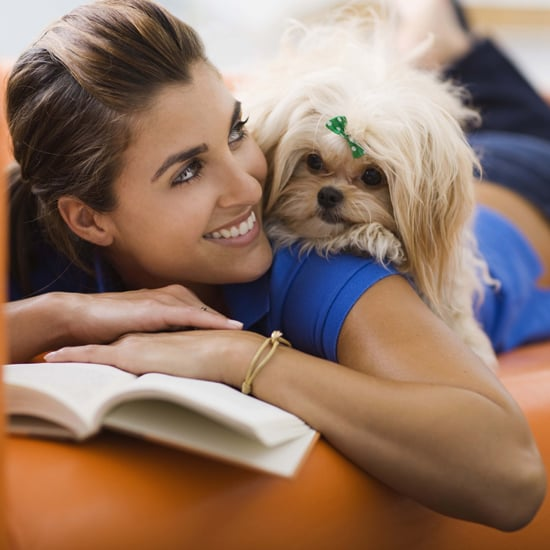 That Waggy Tail and 4 Other Ways Dogs Show They Care