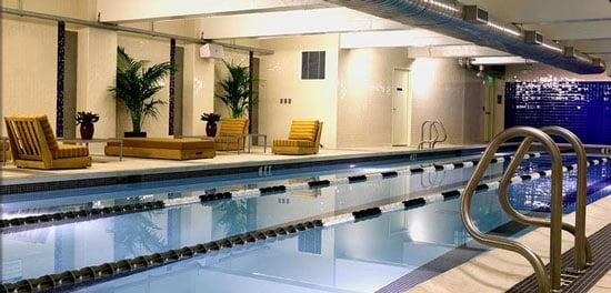 Rotate Entire Torso When Swimming Freestyle