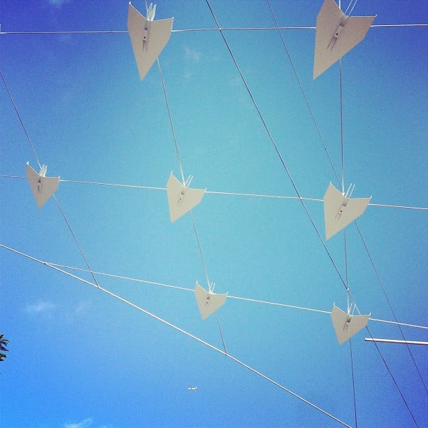 A walk home through Sydney city always results in spotting art of some sort. For Ali, it was pretty paper planes strung up through Taylor Square.