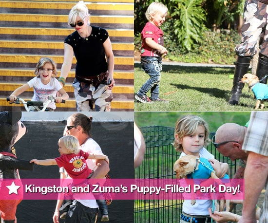 Pictures of Gwen Stefani and Gavin Rossdale With Kingston and Zuma at Park in LA