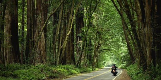 We Asked Riders From Motorcycle Clubs All Over America To Recommend Their Favorite Roads
