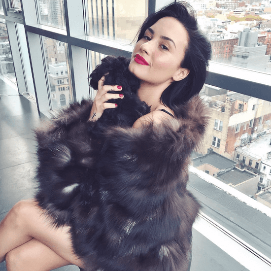 Demi Lovato's New Puppy Batman