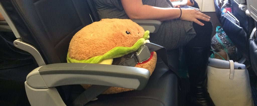 Ambitious Squishable Hamburger Makes History by Flying Across the Country