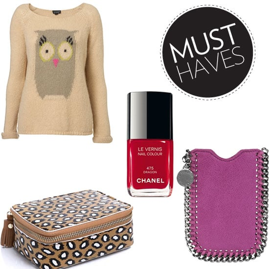 January Fashion and Beauty Must Haves You Can Justify For 2012!