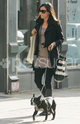 Photos of Famke Janssen Walking Her Dog in SoHo