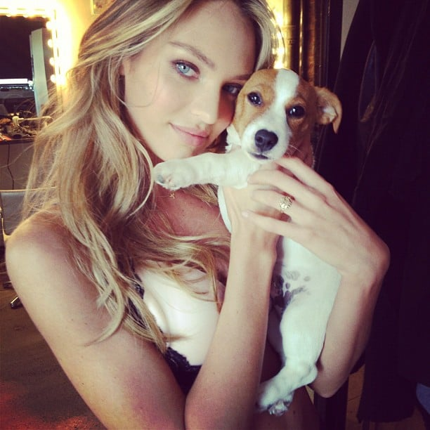 Candice Swanepoel shared a snap with her adorable pup. Source: Instagram user angelcandices