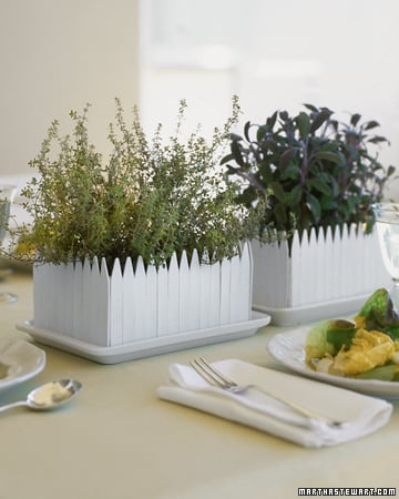 Casa Quickie: White Picket Fence Planter