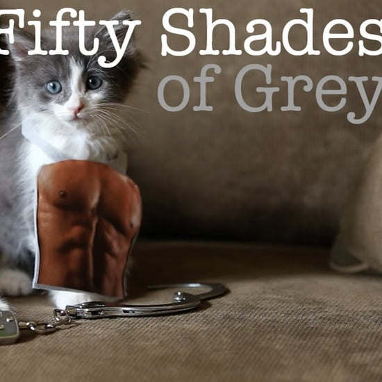 50 Shades of Grey Parodies | Video