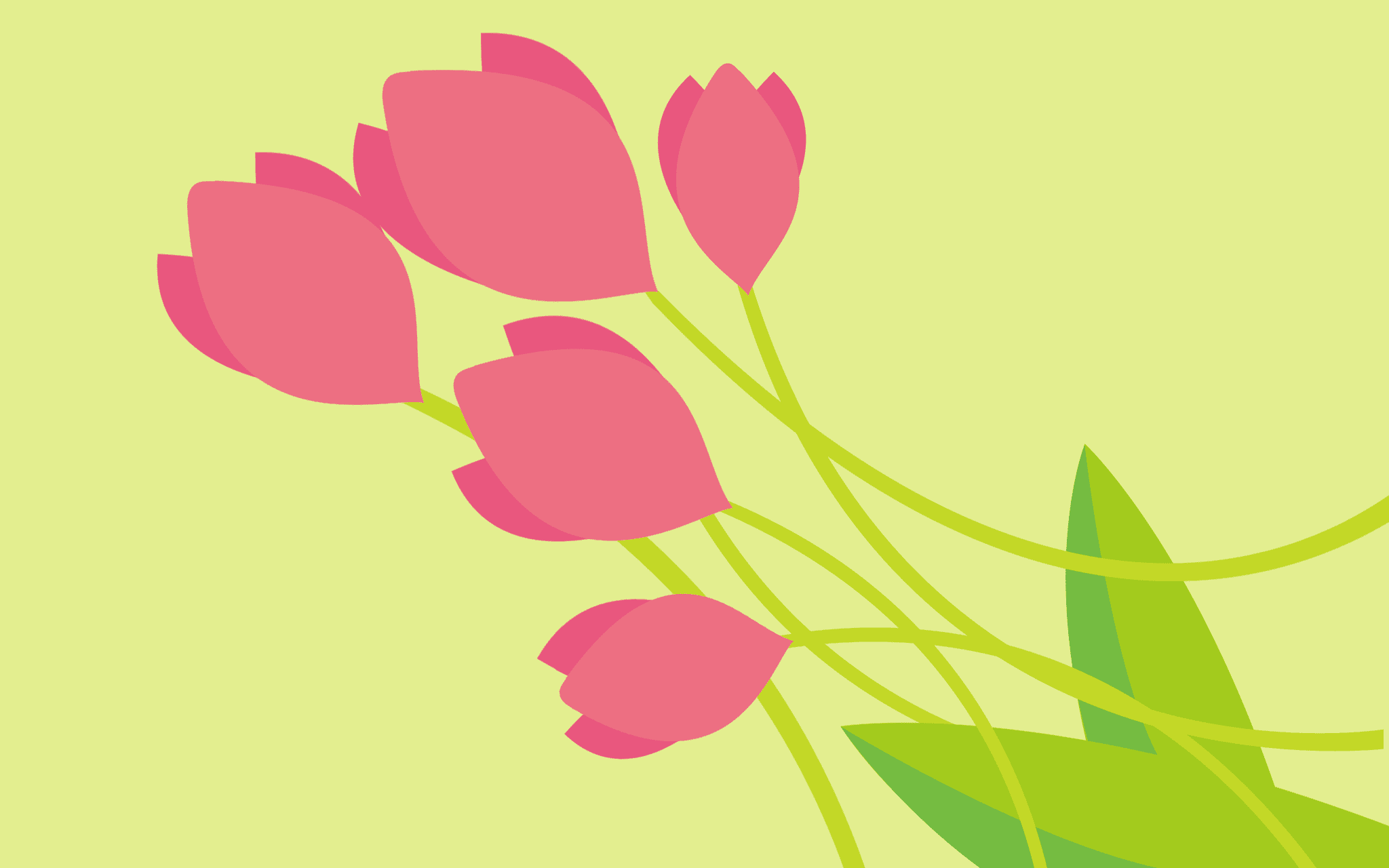 Tulips by Adriana Garcia