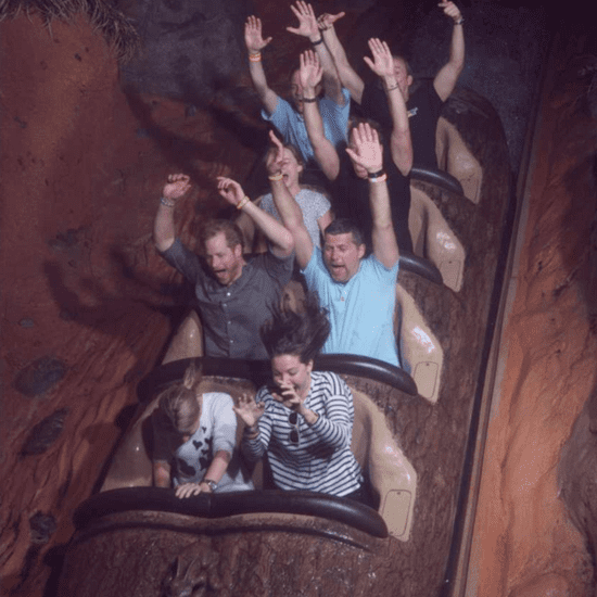 Prince Harry on Splash Mountain in Disney World