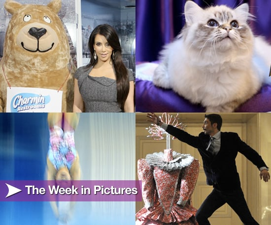 Pictures From the Week of Nov. 22
