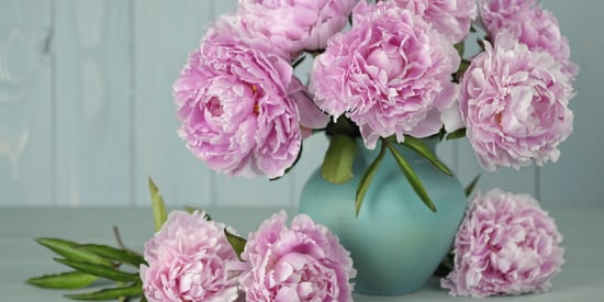 This Simple Trick Could Make Fresh Flowers Last Forever