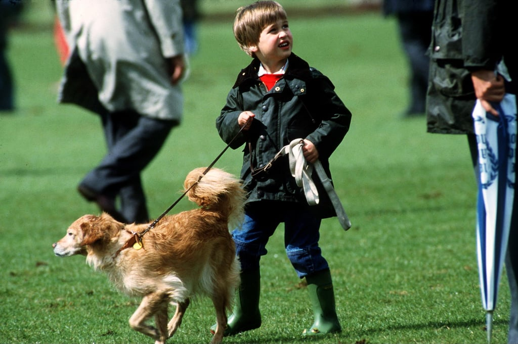 Prince William had a new play partner at the Cirencester polo field in June 1987.