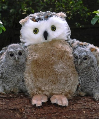 Baby Animals Comforted by Stuffed Animals (PHOTOS)