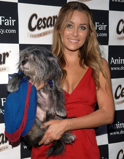 Lauren Conrad's Clothing Line is Dropped from Kitson