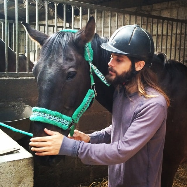Jared Leto claims he danced with this horse. Source: Instagram user jaredleto