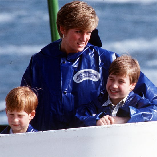 Princess Diana With Prince William & Prince Harry | Pictures