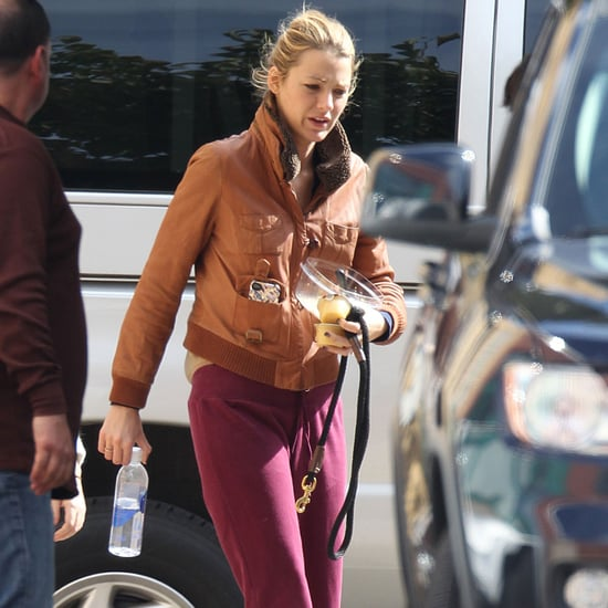 Blake Lively on Gossip Girl Set With Dogs