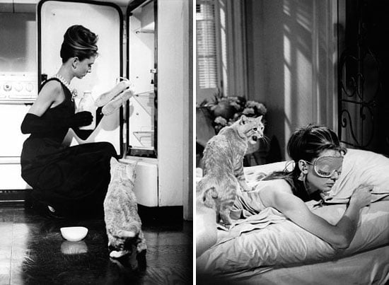 Get the Look: An Audrey-Inspired Studio