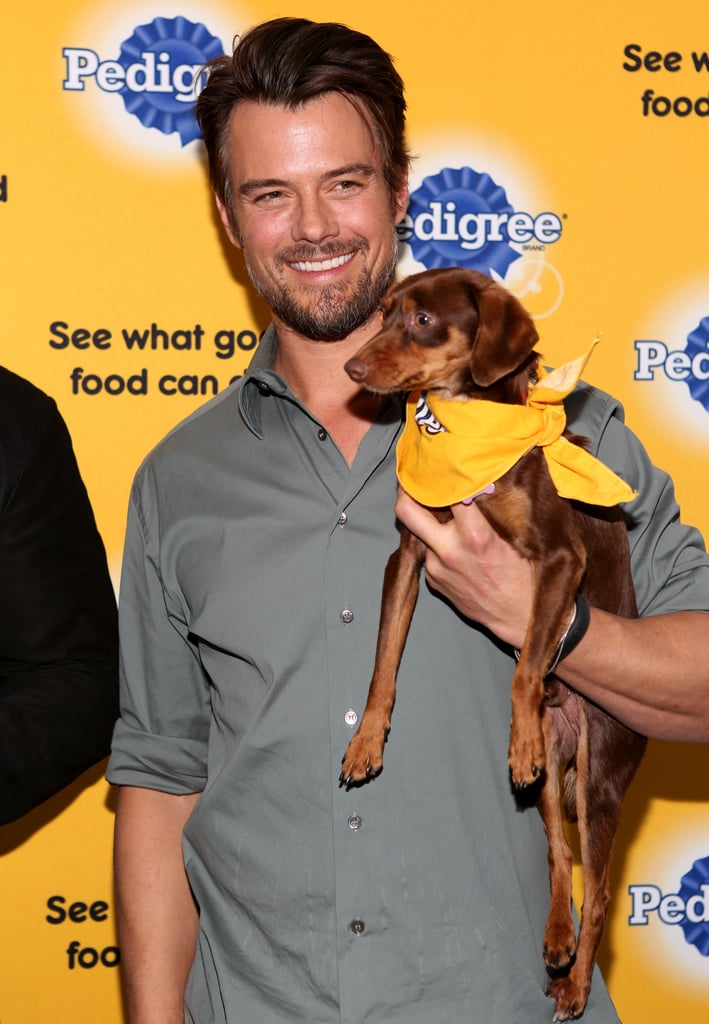 Josh looked extra cute holding on to a puppy at the Sundance Film Festival in January 2014.