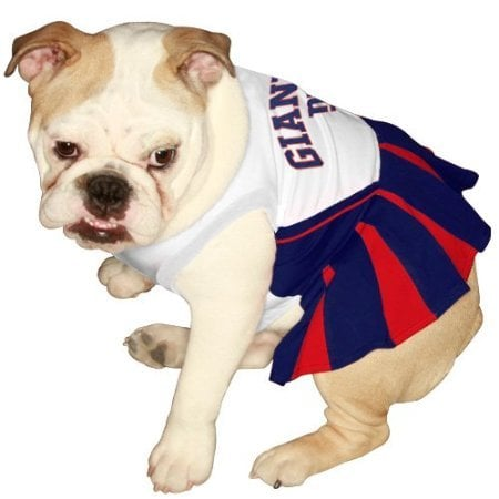 NFL Wear For Dogs