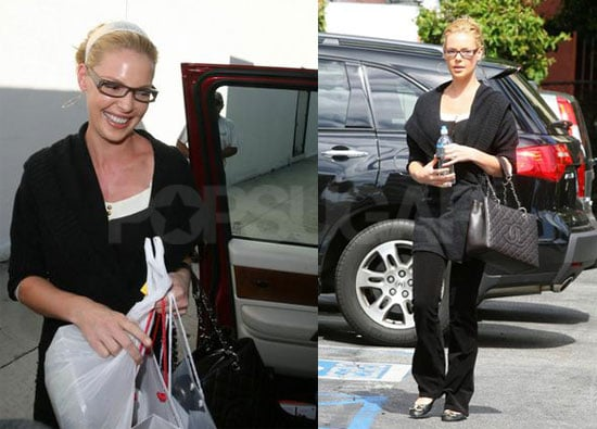 Katherine Heigl's Huge Year