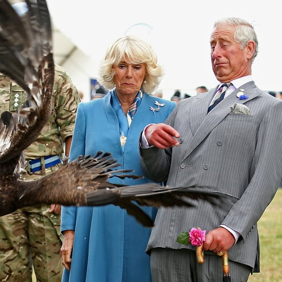 Prince Charles and Camilla Encounter an Eagle With Serious Attitude
