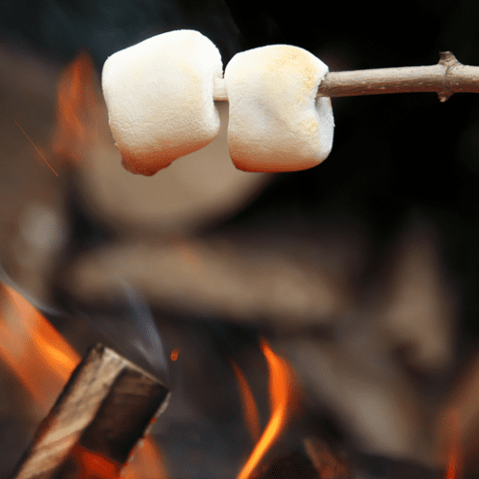Best Camping Snacks