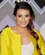 Lea Michele supported Glee at the FOX TCA All-Star Party.
