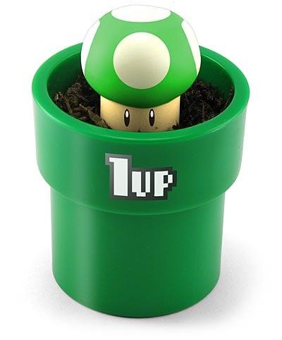 Grow Your Own 1UP Mushroom