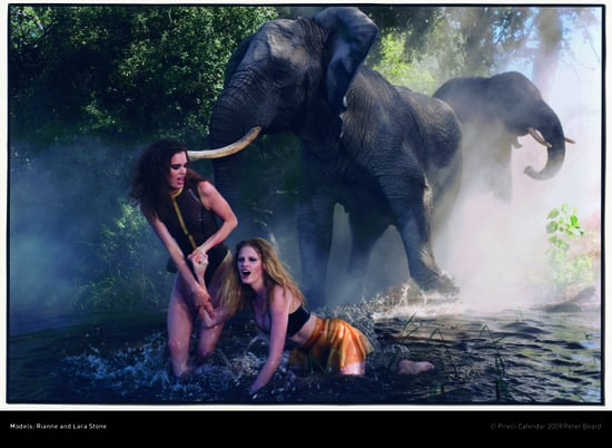Bugs, Elephants, and Models Unite in Botswana for Pirelli 2009
