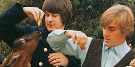 5 Things You Didn't Know About The Beach Boys